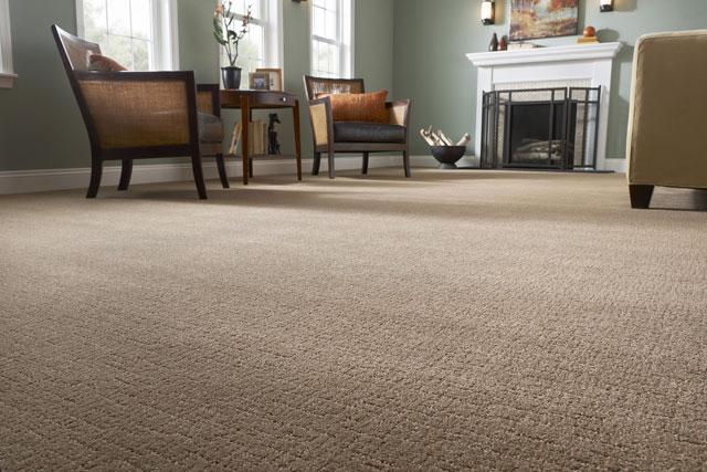 flooring2 - Stainmaster Carpet